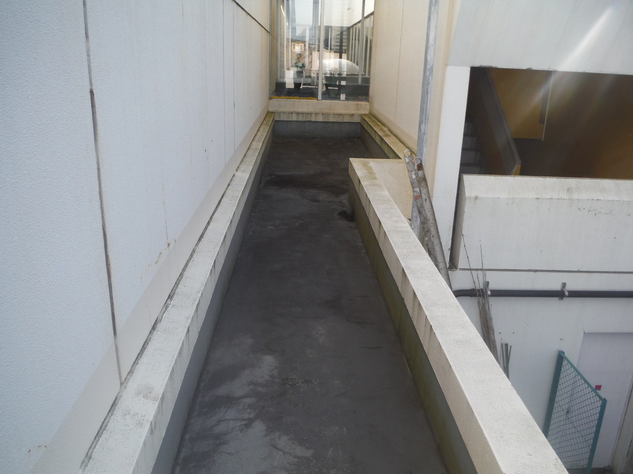 練馬区立某体育館廊下屋根防水工事